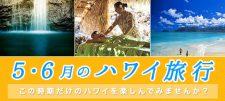 5・6月のハワイ旅行