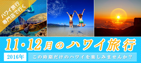 11・12月のハワイ旅行