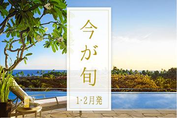 ◎今が旬♪ハワイ旅行◎1・2月発の納得プラン♪