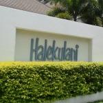 憧れのラグジュアリーホテル「ハレクラニ」の潜入レポート
