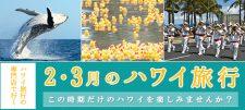 【更新】2・3月ハワイ旅行特集