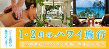 【更新】1・2月のハワイ旅行
