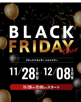 ブラックフライデー特集(11月28日<木>12時から販売開始♪)
